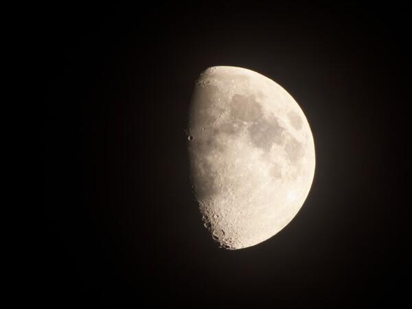 今夜の月です