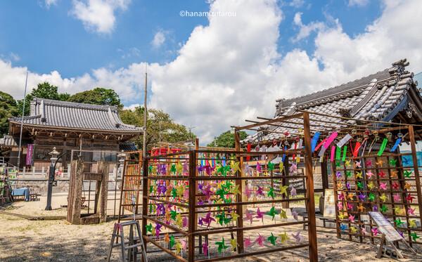【情景】金井神社